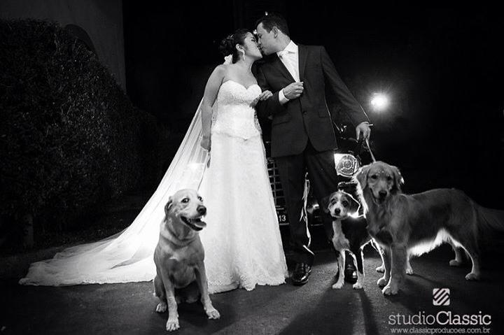 5 dicas para seu pet se comportar no seu casamento. Imagem Studio Classic