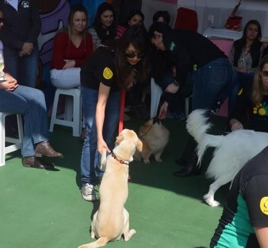 Cão Terapeuta 2014