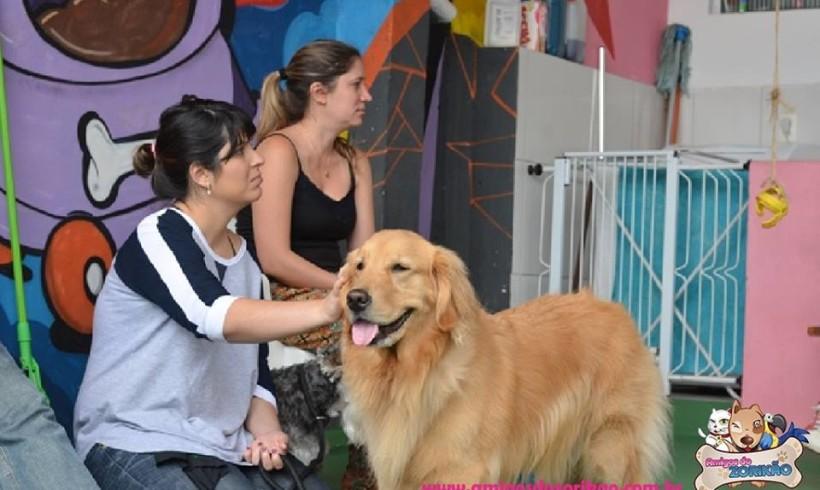 Cão Terapeuta Março 2015