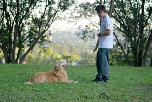 Seu Dog – Aprenda a se comunicar com seu cão!