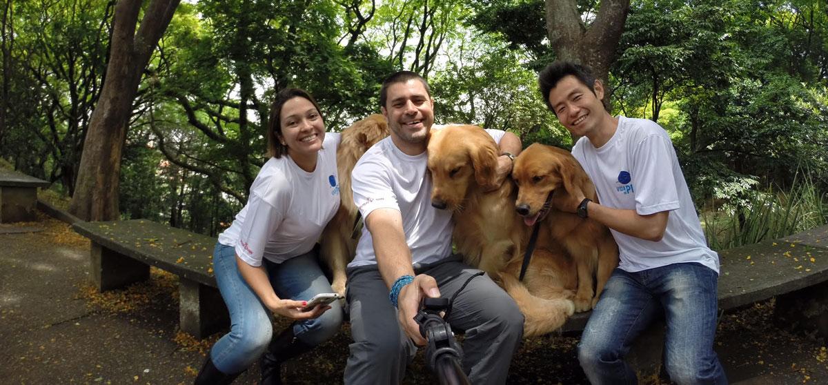 Vida de Pet e Amigos do Zorikão na novela Cúmplices de um Resgate